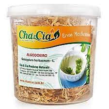 Algodoeiro-gossypium Herbaceum- Pote 80 grs - Cha e Cia