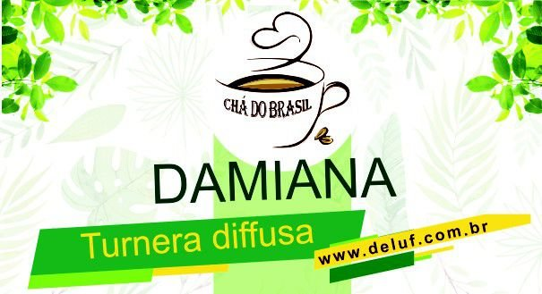 Damiana (Turnera diffusa ) 500 gr. - Cha do Brasil