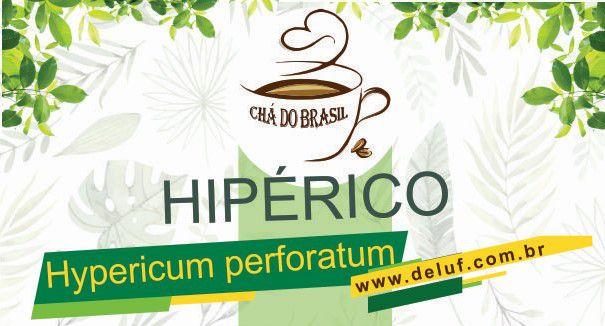 Hipérico- Hypericum Perforatum- 1 kG - Cha do Brasil