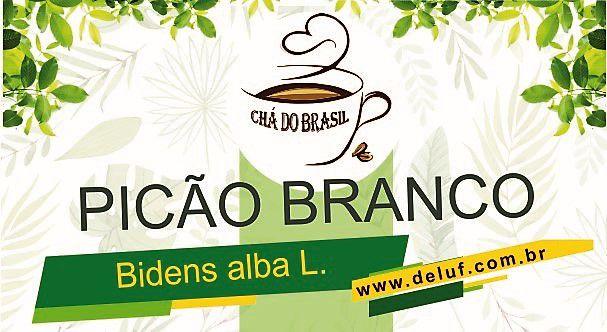 Picão Branco - Bidens Alba - 500 grs - Cha do Brasil