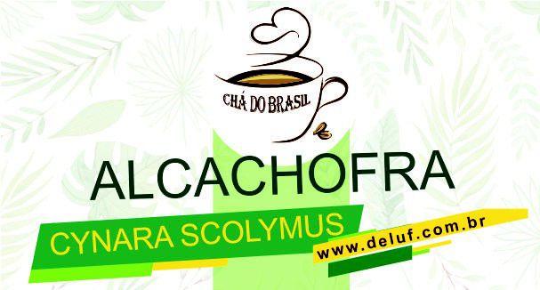 Alcachofra - Cynara Scolymus - 250 grs - Cha do Brasil