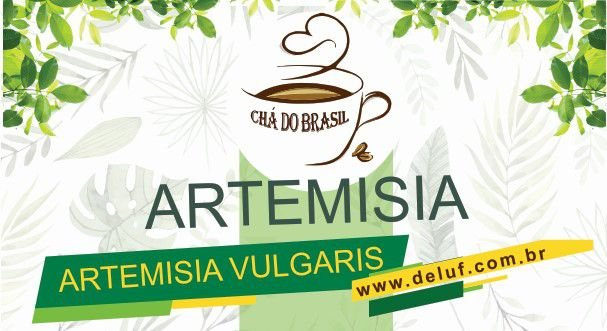 Artemisia - Artemisia Vulgaris - 250 grs - Cha do Brasil