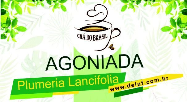 Agoniada - Plumeria Lancifolia - 250 gr - Cha do Brasil