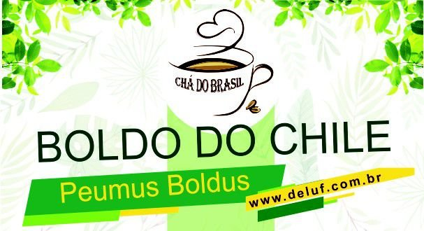 Boldo do Chile - Peumus Boldus - 250 Grs - Cha do Brasil