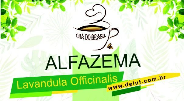 Alfazema - Lavandula Officinalis - 250 grs - Cha do Brasil