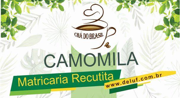 Camomila - Matricaria Recutita 250 grs - Cha do Brasil