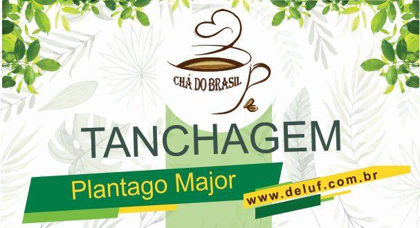 Tanchagem-Plantago Major - 250 grs - Cha do Brasil