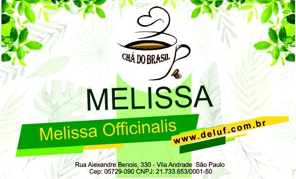 Melissa - Melissa Officinalis - 250 grs - Cha do Brasil