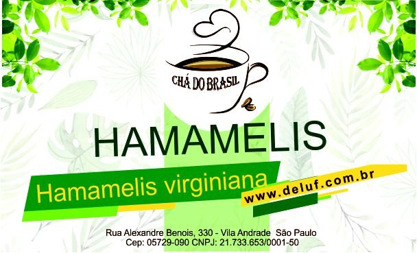 Hamamelis - Hamamelis Virginiana - 250 grs - Cha do Brasil