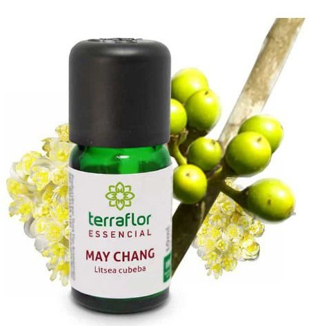 ÓLEO ESSENCIAL MAY CHANG (LITSEA CUBEBA) 10ML TERRA FLOR