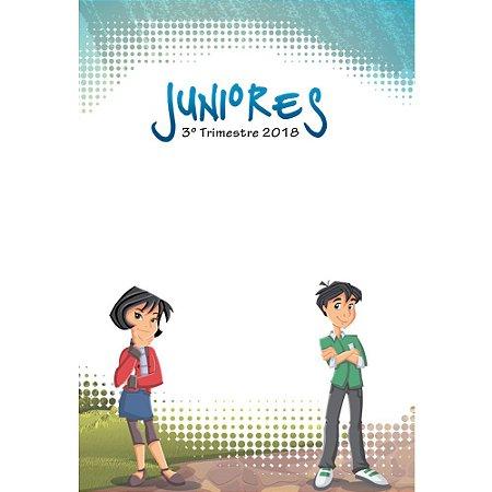 Pasta de Visuais Juniores - 3º Trimestre 2018