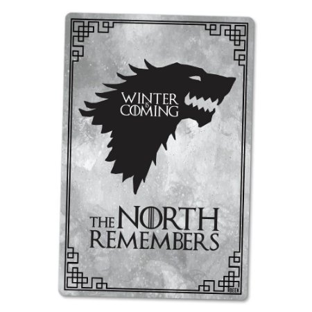 Placa Decorativa 24x16 The North - Beek