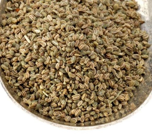 Aipo marrom sementes 200 gramas