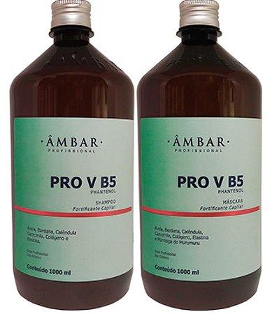 Kit PRO VB5 de 1Litro