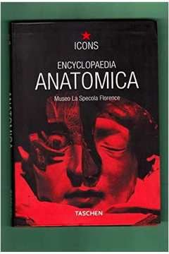 Livro Encyclopaedia Anatomica Autor Monika V. During (2001) [usado]