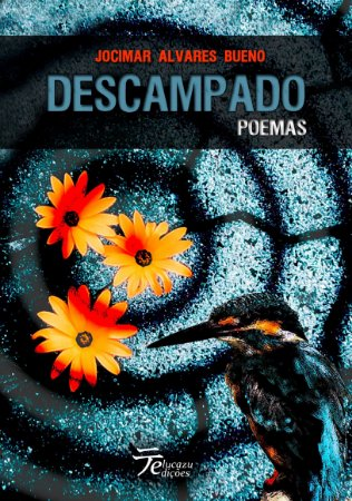 Descampado - Jocimar Alvares Bueno