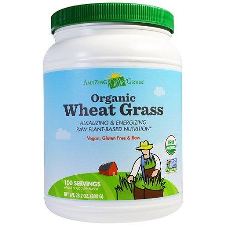 Grama do Trigo Orgânica em Pó, Amazing Grass, 800 g