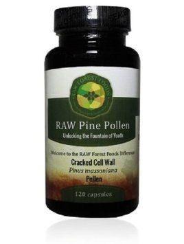 Pólen de Pinheiro Extrato 10:1, Raw Forest Foods, 120 capsulas