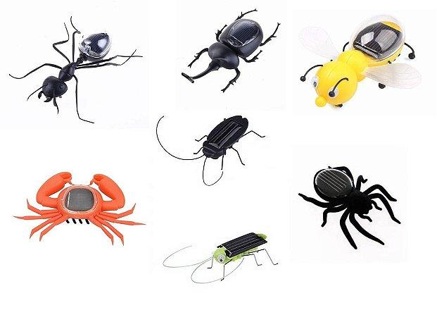 Brinquedos ecológicos e educativos movidos a energia solar - Animais