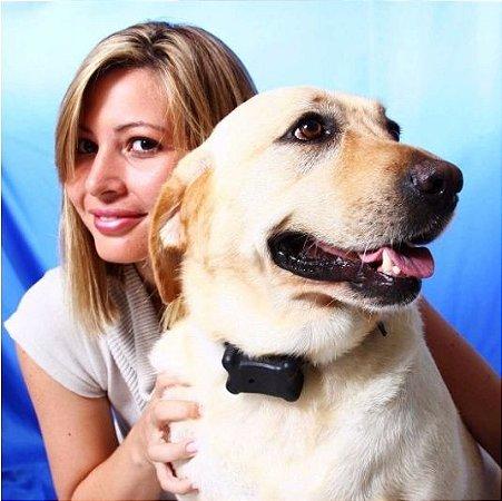 Coleira Anti-Latido Adestramento Alfa -  Silencie seu cão - Sem Choque