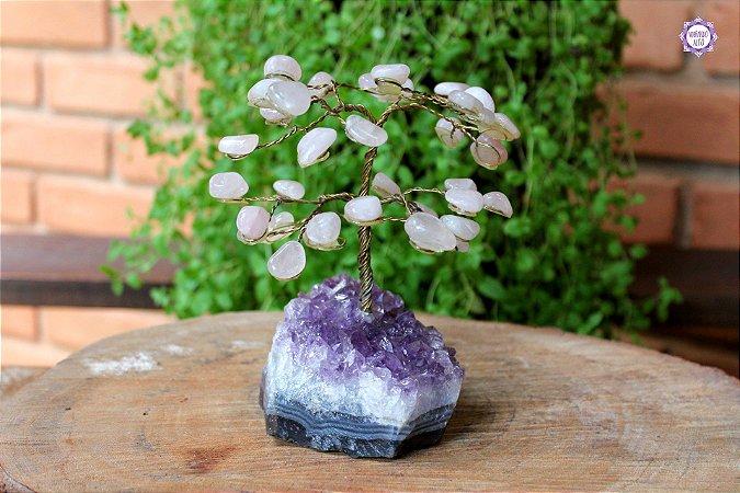 Árvore de Quartzo Rosa M com 15cm base Drusa de Ametista 658g | Cristal do Amor Divino e Cura Emocional