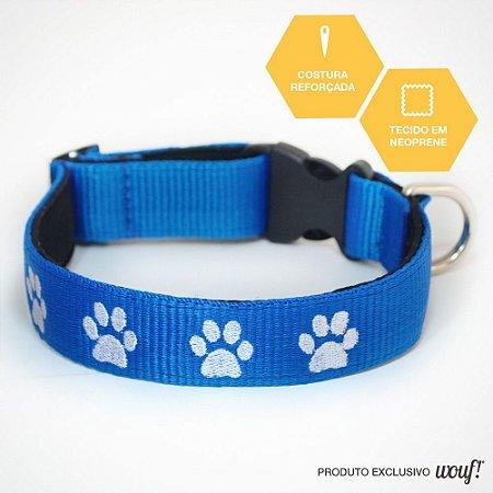 Coleira de Identificação para Cachorro- Fita Azul