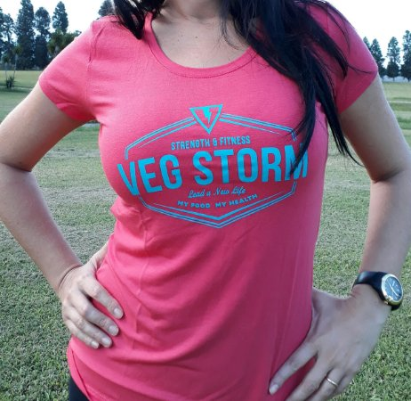 Camiseta Viscolycra cor melancia com estampa azul turquesa
