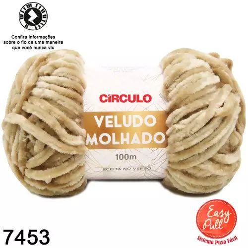FIO VELUDO MOLHADO 100 MTS CIRCULO COR 7453