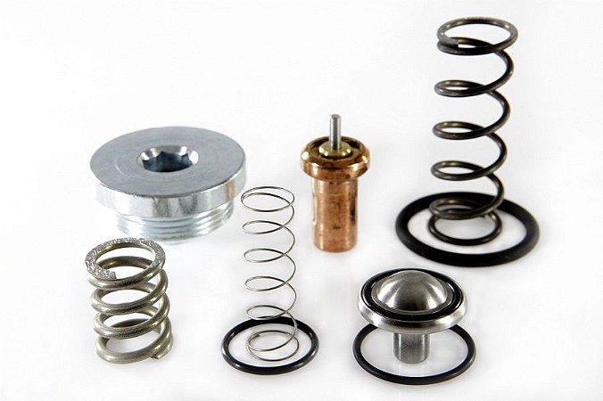 Kit Reparo da Válvula Termostática e da Válvula de Pressão Mínima 2901109500 para Chicago Pneumatic