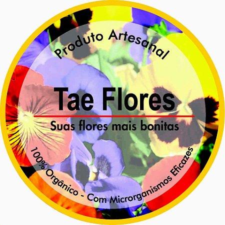 TAE FLORES 1Kg