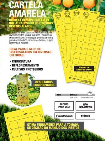 10 Cartelas Amarela - Armadilha Adesiva