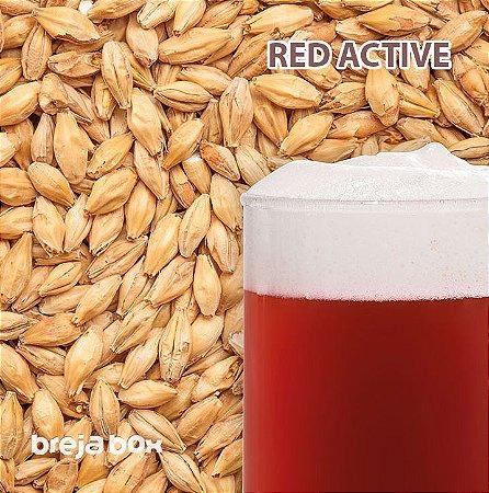 Malte Red Active Viking | 30 EBC Breja Box