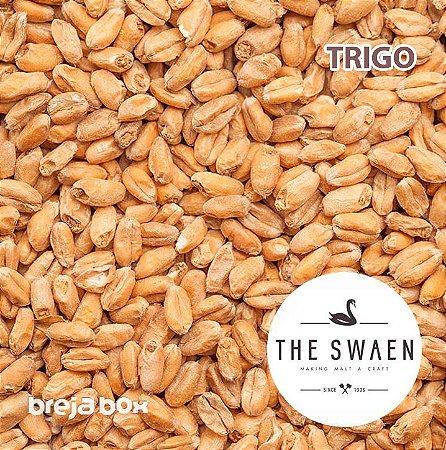 Malte de Trigo The Swaen | 3 - 5 EBC Breja Box