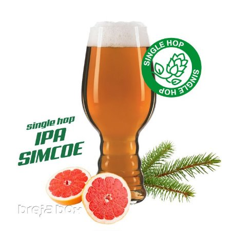IPA Single Simcoe kit receita - Breja Box