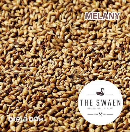 Malte Melany Swaen | 60-80 EBC Breja Box