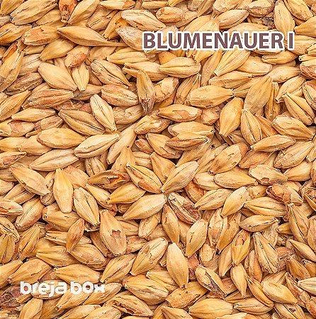 Malte Blumenauer I Blumenau | 60-80 EBC Breja Box