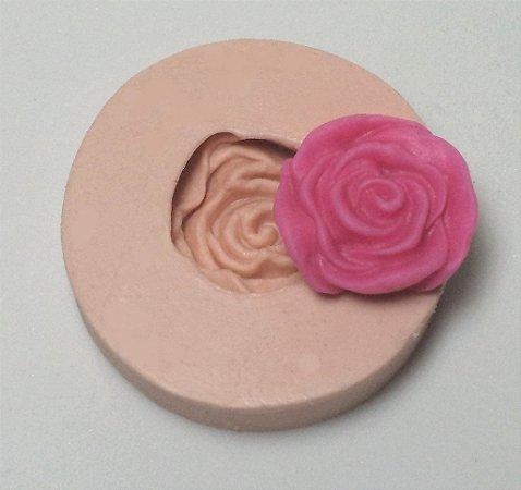 697 - Rosa média