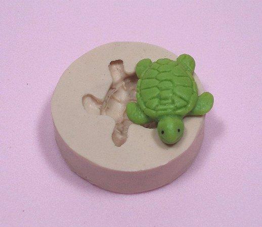 252 - Tartaruga Pequena