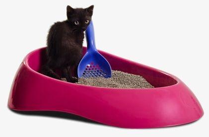 Caixa de Areia do Gato com Pá de Limpeza