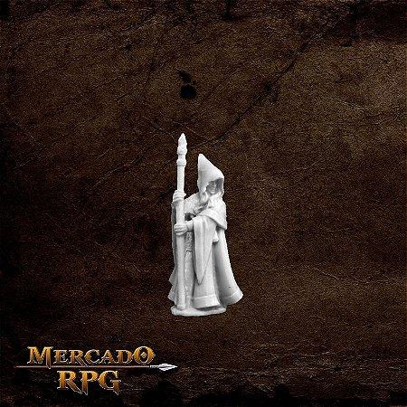 Anirion, Wood Elf Wizard
