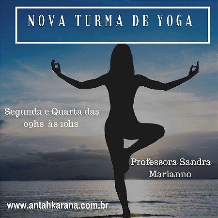 Aulas de Hatha Yoga
