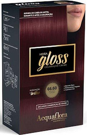 ACQUAFLORA Coloração Permanente Hidra Gloss 66.60 Vermelho Granada