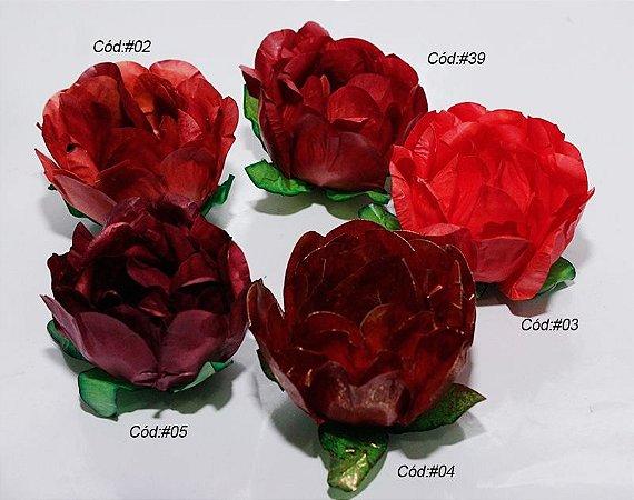 Rosa Bela tons vermelho