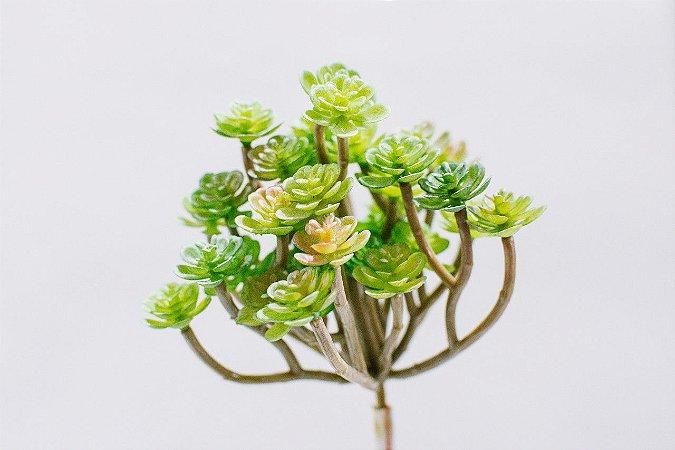 Mini suculenta artificial galhado verde