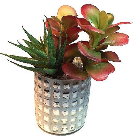 Vaso De Vidro Branco Com Suculentas E Mini Babosa