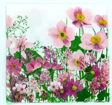 Guardanapo 33cm x 33cm Floral fd. Branco (2 unidades)