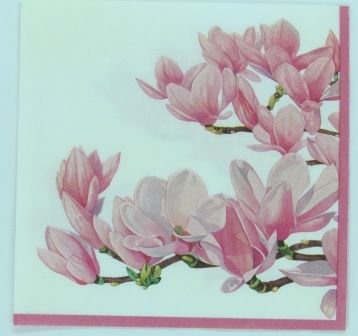Guardanapo 33cm x 33cm Floral Rosa fd. Branco (2 unidades)