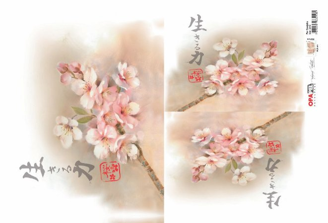 Opapel - Flor de Cerejeira (OPL2314)