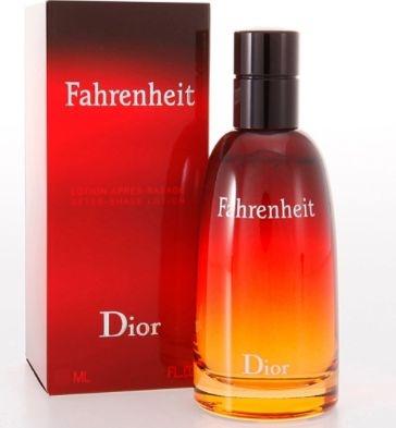 Perfume Fahrenheit Christian Dior Eau de Toilette Masculino 50 ml