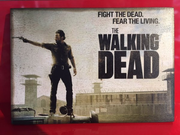 Quadro 30x20cm - The Walking Dead -  Fear the living